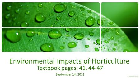 Environmental Impacts of Horticulture Textbook pages: 41, 44-47 September 14, 2011.