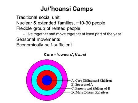 Ju/'hoansi Camps Traditional social unit Nuclear & extended families, ~10-30 people Flexible group of related people - Live together and move together.