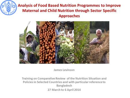 Analysis of Food Based Nutrition Programmes to Improve Maternal and Child Nutrition through Sector Specific Approaches James Levinson Training on Comparative.