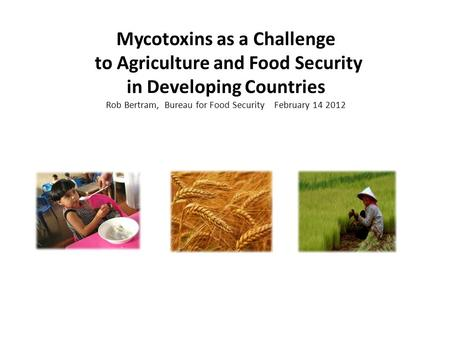 Mycotoxins as a Challenge to Agriculture and Food Security in Developing Countries Rob Bertram, Bureau for Food Security February 14 2012.