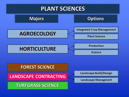PLANT SCIENCES FOREST SCIENCE TURFGRASS SCIENCE AGROECOLOGY LANDSCAPE CONTRACTING HORTICULTURE Integrated Crop Management Plant Science Production Science.