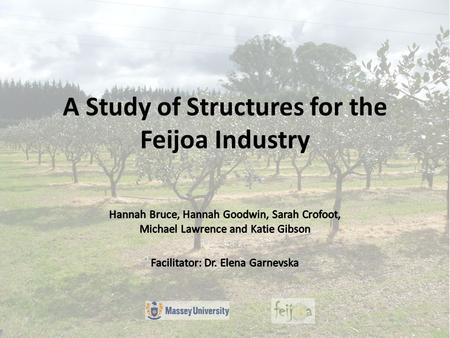 A Study of Structures for the Feijoa Industry. Client Introduction New Zealand Feijoa Growers Association (NZFGA) 200 Grower Members Funded by levies.