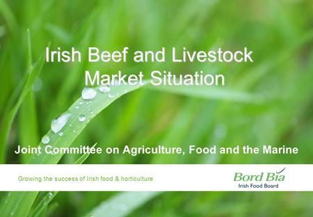 Growing the success of Irish food & horticulture AIDAN COTTER CHIEF EXECUTIVE BORD BIA 28 JANUARY 2009 Growing the success of Irish food & horticulture.