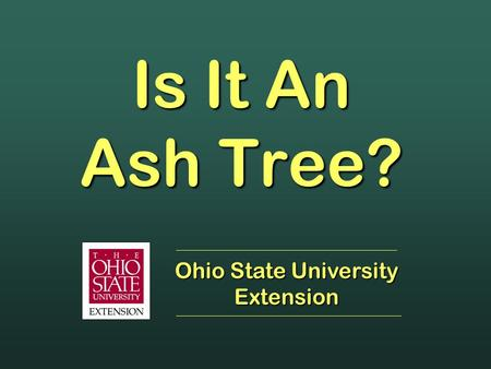 Is It An Ash Tree? Ohio State University Extension.
