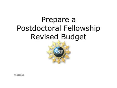 Prepare a Postdoctoral Fellowship Revised Budget BS042005.