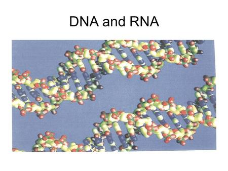 DNA <strong>and</strong> RNA.