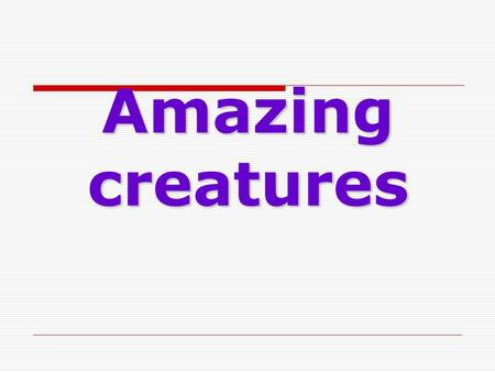 Amazing creatures. Practice Speaking aboutSpeaking about animals and pets; Listening;Listening; Writing tests andWriting tests and sending an e-mail;