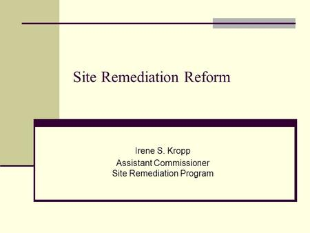 Site Remediation Reform Irene S. Kropp Assistant Commissioner Site Remediation Program.