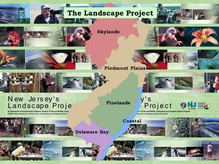 The Landscape Project Skylands Pinelands Piedmont Plains Delaware Bay Coastal.