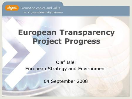European Transparency Project Progress Olaf Islei European Strategy and Environment 04 September 2008.