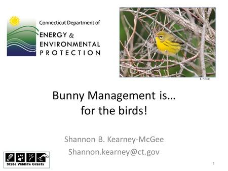 Bunny Management is… for the birds! Shannon B. Kearney-McGee E. Hinkel 1.