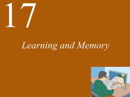 17 Learning and Memory. 17 Learning and Memory Functional Perspectives on Memory There Are Several Kinds of Memory and Learning Memory Has Temporal Stages: