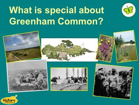 What is special about Greenham Common?. You are lucky to live near an area that is so full of history… Did you know that... A stone age axe head was found.