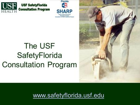 The USF SafetyFlorida Consultation Program www.safetyflorida.usf.edu.