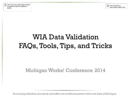 Promoting a flexible, innovative, and effective workforce system within the State of Michigan. WIA Data Validation FAQs, Tools, Tips, and Tricks Michigan.