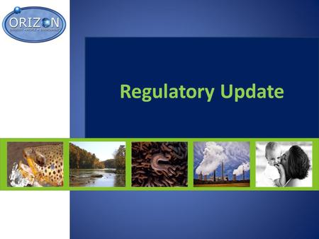Regulatory Update. January Meeting Recap/Update Enforcement News -Wal-Mart -MSHA Advanced Notice -EPA – Clean Water Act (CWA) & EPD -OSHA – Stone, Clay,