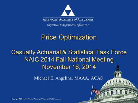 Copyright © 2014 by the American Academy of Actuaries. All Rights Reserved. Michael E. Angelina, MAAA, ACAS Price Optimization Casualty Actuarial & Statistical.