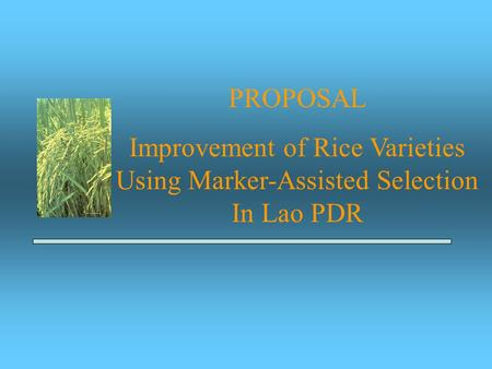 PROPOSAL Improvement of Rice Varieties Using Marker-Assisted Selection In Lao PDR.
