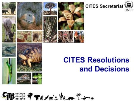 1 CITES Resolutions and Decisions CITES Secretariat.