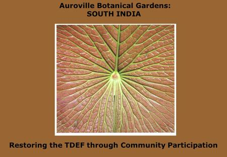 Auroville Botanical Gardens: SOUTH INDIA Restoring the TDEF through Community Participation.