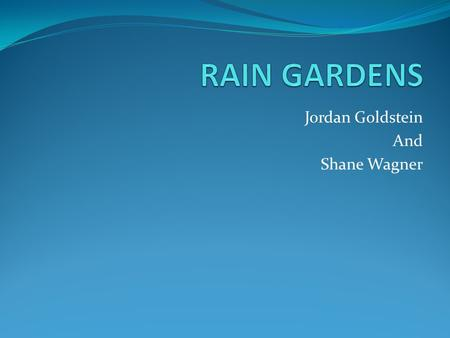 Jordan Goldstein And Shane Wagner. A rain garden is… A Filter- Rain Gardens filter runoff water. A Refrigerator- water that comes off impervious surfaces.