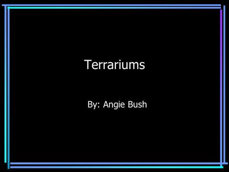 Terrariums By: Angie Bush Introduction A terrarium is a living plant growing inside a sealed glass container. In this presentation I will explain all.