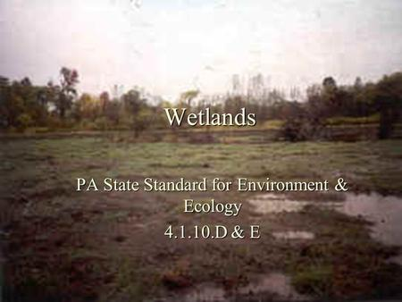 Wetlands PA State Standard for Environment & Ecology 4.1.10.D & E.