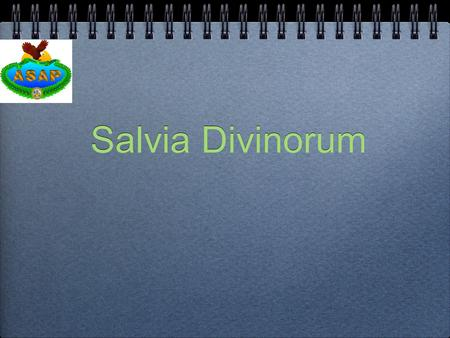 Salvia Divinorum. Learning Objectives Terminal Learning Objective: The unit commander will become familiar with Salvia Divinorum and be able to determine.