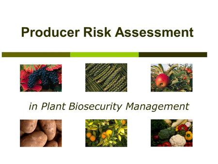 Producer Risk Assessment in Plant Biosecurity Management.