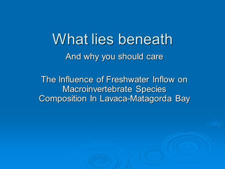 What lies beneath And why you should care The Influence of Freshwater Inflow on Macroinvertebrate Species Composition In Lavaca-Matagorda Bay.