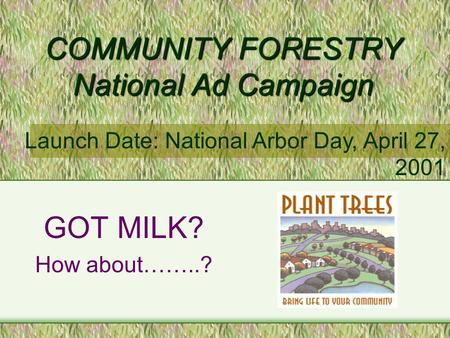 COMMUNITY FORESTRY National Ad Campaign GOT MILK? How about……..? Launch Date: National Arbor Day, April 27, 2001.