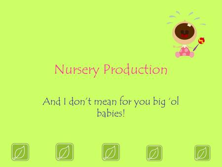 Nursery Production And I don't mean for you big 'ol babies!