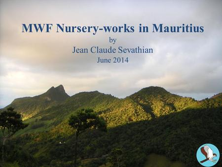 MWF Nursery-works in Mauritius by Jean Claude Sevathian June 2014.