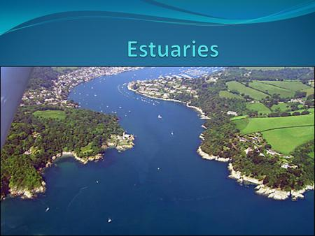 What is an estuary? An estuary is a partially enclosed body of water where two different bodies of water meet and mix (e.g. fresh water from rivers or.