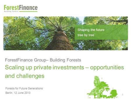 ForestFinance Group– Building Forests Scaling up private investments – opportunities and challenges Forests for Future Generations Berlin, 12 June 2013.