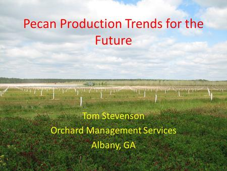 Pecan Production Trends for the Future Tom Stevenson Orchard Management Services Albany, GA.