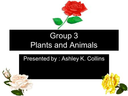 Group 3 Plants and Animals Presented by : Ashley K. Collins.