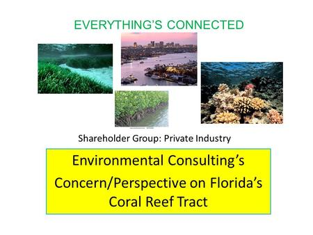 Shareholder Group: Private Industry Environmental Consulting's Concern/Perspective on Florida's Coral Reef Tract EVERYTHING'S CONNECTED.