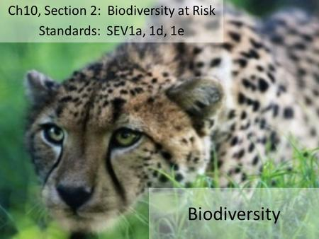 Biodiversity Ch10, Section 2: Biodiversity at Risk Standards: SEV1a, 1d, 1e.