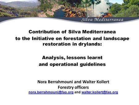 Contribution of Silva Mediterranean Contribution of Silva Mediterranea to the Initiative on forestation and landscape restoration in drylands: Analysis,