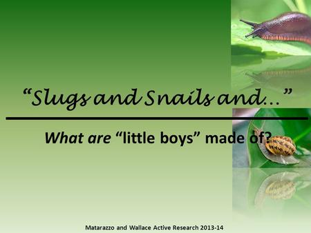 """Slugs and Snails and…"" Matarazzo and Wallace Active Research 2013-14 What are ""little boys"" made of?"