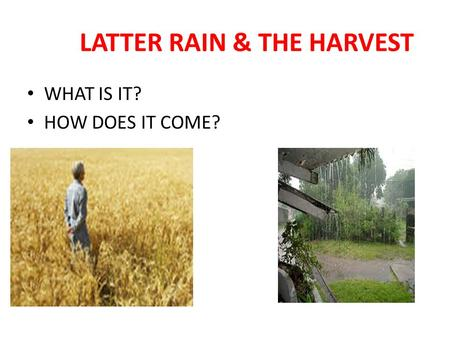 LATTER RAIN & THE HARVEST WHAT IS IT? HOW DOES IT COME?
