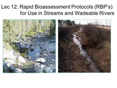 Lec 12: Rapid Bioassessment Protocols (RBP's) for Use in Streams and Wadeable Rivers.