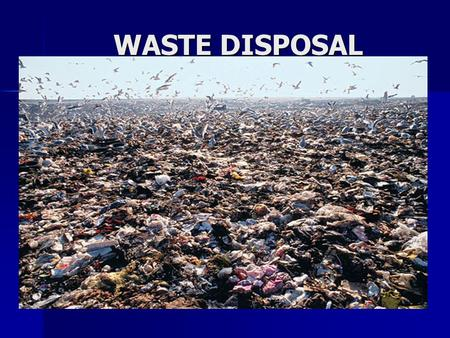 WASTE DISPOSAL. GET THE FACTS: The US, with 5% of the world's population, generates 33% of the world's total waste. The US, with 5% of the world's population,