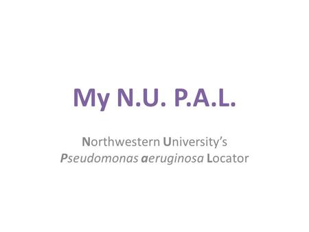 My N.U. P.A.L. Northwestern University's Pseudomonas aeruginosa Locator.