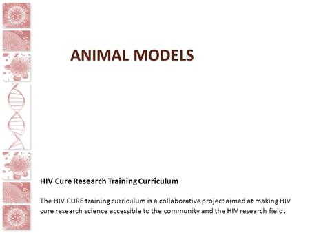 ANIMAL MODELS HIV Cure Research Training Curriculum The HIV CURE training curriculum is a collaborative project aimed at making HIV cure research science.