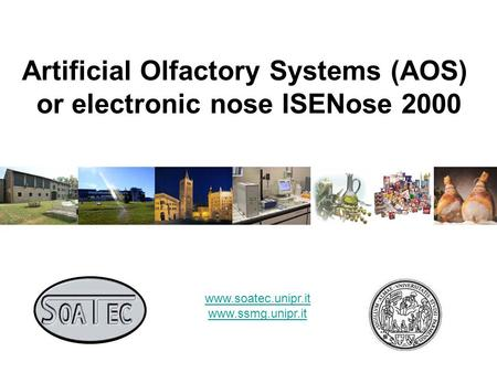 Artificial Olfactory Systems (AOS) or electronic nose ISENose 2000 www.soatec.unipr.it www.ssmg.unipr.it.