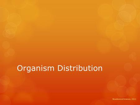 Organism Distribution Noadswood Science, 2011. Organism Distribution  To understand how changes in the environment affect the distribution of organisms.