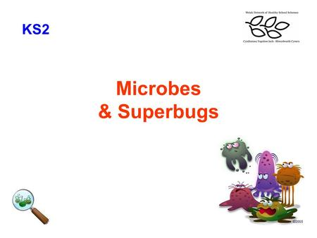 Microbes & Superbugs KS2. What we need to learn KS2 To understand what microbes are, what they look like To understand how microbes spread and the effect.