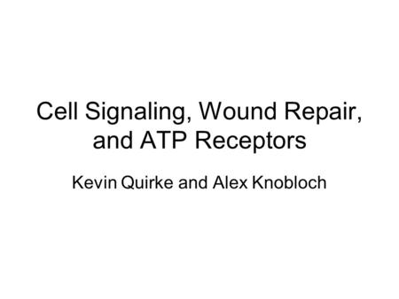 Cell Signaling, Wound Repair, and ATP Receptors Kevin Quirke and Alex Knobloch.